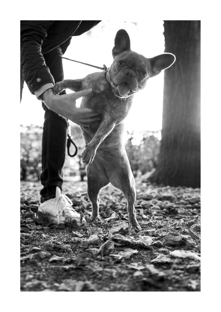 Spaziergang mit dem Hund, Streetphotography, schwarz weiß, Tom Brunner